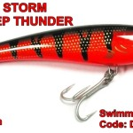 Storm Deep Thunder 15 RT